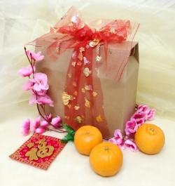 CNY20 Orange 01
