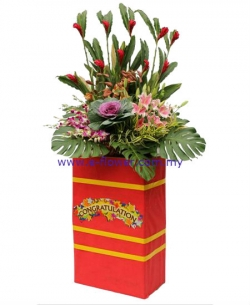Congratulatory Flowers